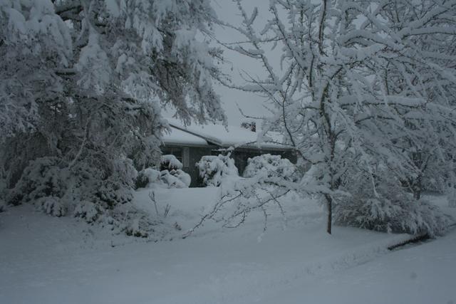 Snow 2-25-19 640X420.jpg