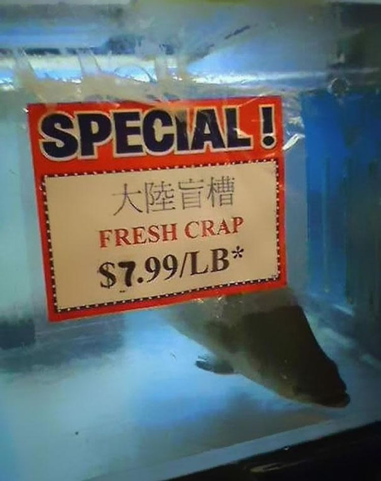 Crap for sale.JPG
