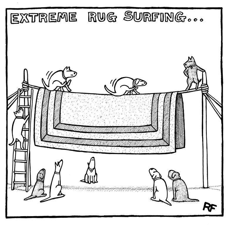 Extreme Rug Surfing Cartoon.jpg