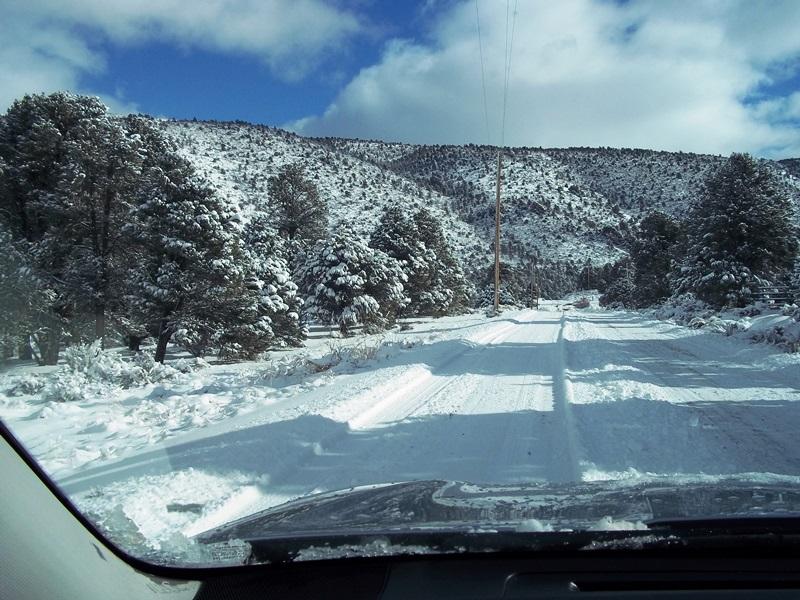 12-14-15 Snow 7.jpg